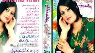 Pashto Brikhna Amil New Album Peghla Da Kabul Songs 2013