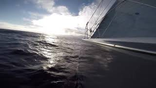 Boat Cruise Ship Ship Waves Travel Ocean Sailing No Copyright Video