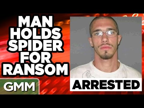 Most Bizarre Arrests of All Time