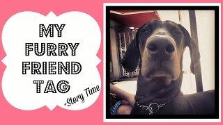 My Furry Friend Tag | Story Time | Bella The Doberman