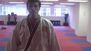 Mini Martial Arts Lesson With Master Blin