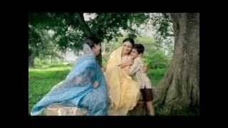 HealthPhone™: Exclusive Breastfeeding - No Water - Hindi