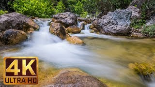 Relaxing 2 Hours of Clear Mountain Stream - 4K Nature Video with Water Sounds