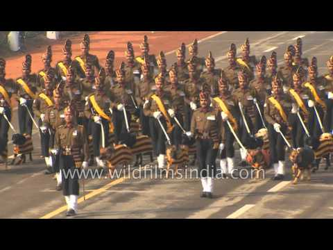 watch Dogs march alongside: Indian Army marching contingent at Republic Day 2016