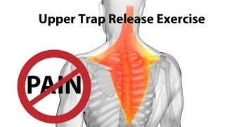 Upper Trap Release Exercise for Instant Neck Pain Relief - Dr Mandell