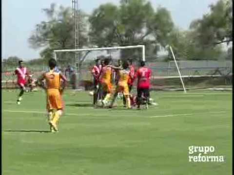 Bronca Tigres vs Veracruz Lobos vs Roro Partido Pretemporada