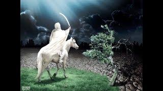 نهاية العالم نبؤة نبي : 18 ـ 20 نزول عيسى وقتل الدجال بالقدس ، ونطق الشجر والحجر