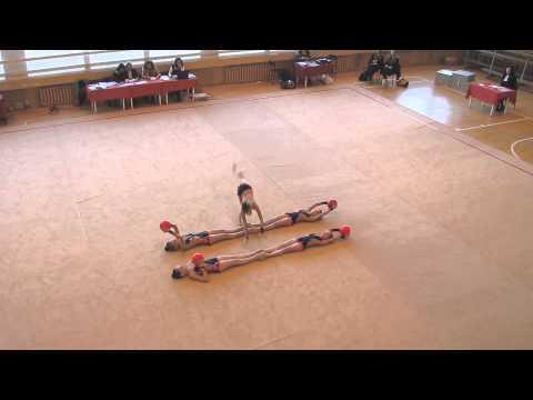Meninė gimnastika 2014