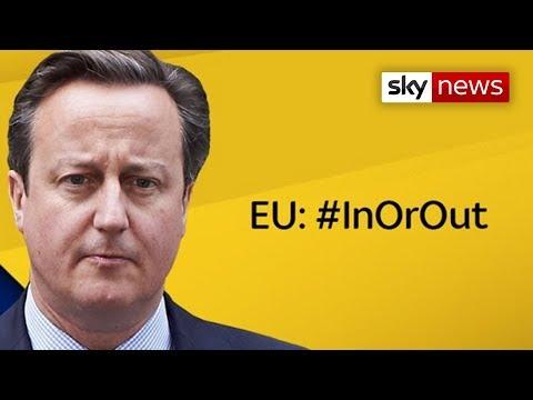 David Cameron EU In Or Out