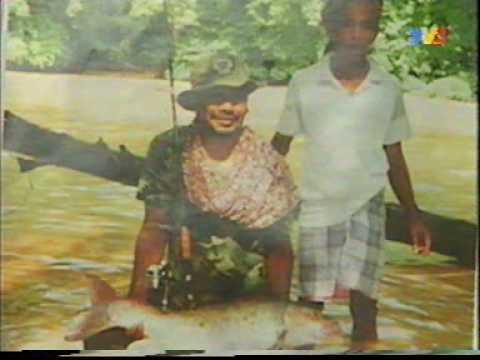 Ikan Kelah Sungai Nenggiri Gua Musang Kelantan