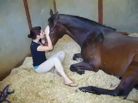 Xxx Mp4 Girl And Horse 3gp Sex