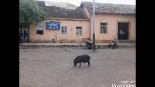 Nagraj Manjule's House in Jeur|How to go there from Jeur railway station|karmala|-Tuna