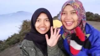 Pendakian Gunung Cikuray 2821 mdpl Via Garut Cikajang