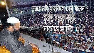 চরমোনাই মাহফিলে কেন যাবেন ?Mufti Faizul Karim | এত গুরুত্বপূর্ণ বয়ান আগে কখনো শুনেন নাই|একবার শুনেন