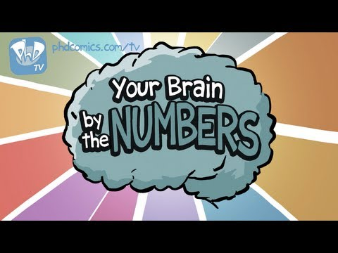Your Brain is Amazing