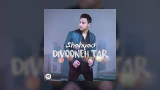Shahyad - Divooneh Tar OFFICIAL TRACK