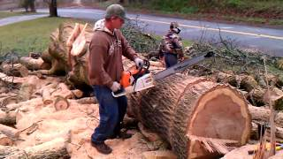 What makes life easier? Huge Mega Chainsaw Circular Saw New Intelligent Technology of Wood Cutting