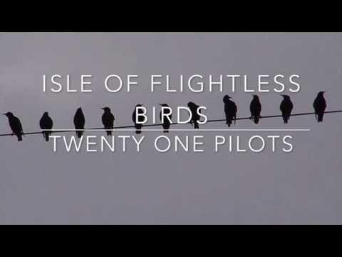 isle of flightless birds - twenty one pilots  lyrics
