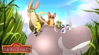 Hippo Lanes | Music Video | The Lion Guard | Disney Junior