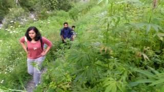 way to malana village single tracking with m cream