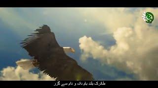 Tu Abhi Reh Guzar Mein Hai (Allama Iqbal)