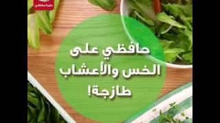 طريقة الحفاظ على الخس والأعشاب طازجة