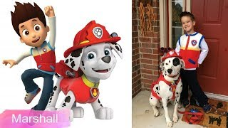 Paw Patrol Dogs Real Life Breeds