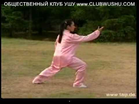 24 Формы Тайцзицюань Видео Скачать Бесплатно