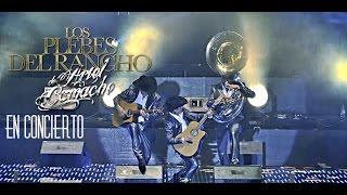 Los Plebes del Rancho de Ariel Camacho En Concierto (En Vivo HD)