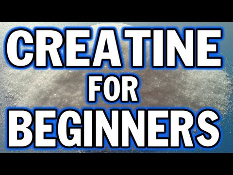 Creatine for Beginners Things You Need to Know