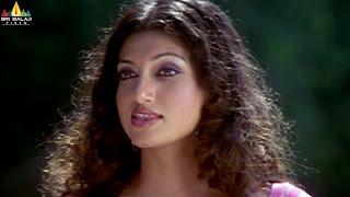 Hamsa Nandini Scenes Back to Back   Telugu Movie Scenes   Sri Balaji Video