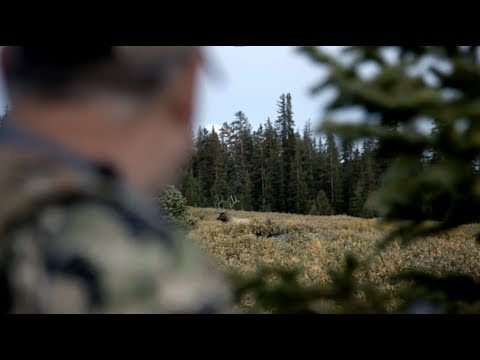 Xxx Mp4 Wyoming Elk Hunt Day 1 The Linguists Rough Cuts 3gp Sex