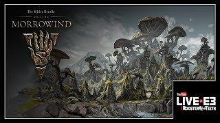 Morrowind? MORE-OWIND AMIRITE? - YouTube Live at E3