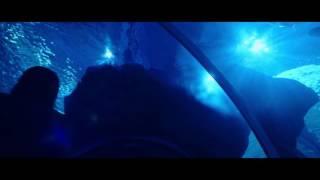 Yves Saint Laurent BLACK OPIUM ad