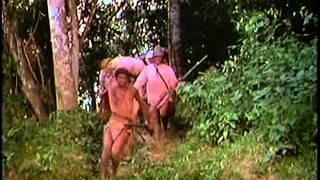 Tuxtepec 1977 (el simio blanco)