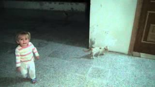 حلا  والقطط 24 August، 2015 17:33