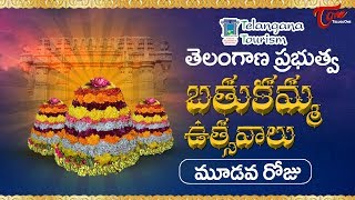 Bathukamma Sambaralu 2017 | Telangana Govt Bathukamma 3rd Day Celebrations