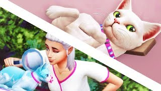 WE'VE BEEN ROBBED // The Sims 4: Cats & Dogs #3