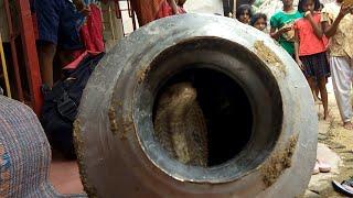Pani Ke Jhaba Se Nikla Cobra Snake From: Nalanga, Odisha