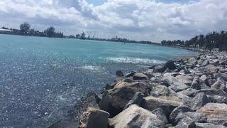 Mullet run 2017 Blue Heron Inlet