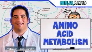 Biochemistry | Amino Acid Metabolism