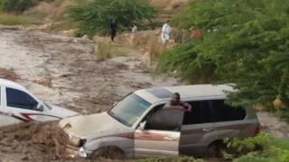 شباب ينقذون رجل من موت محقق بعد أن داهمه سيل وجرف سيارته وسيارة الدفاع المدني