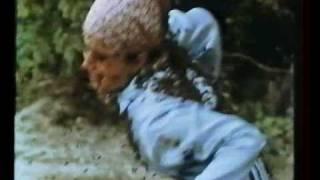 The Savage Bees (Les Abeilles féroces) - Bruce Geller - 1976