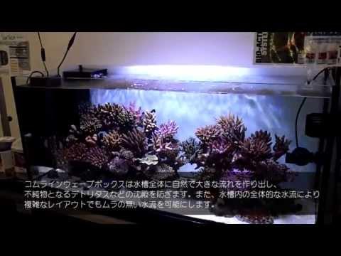 aquarium goods tunze comline wavebox 6208 playithub largest