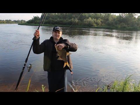 фидер в белоруссии видео