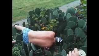 Cactus Jump Fail Compilation