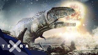 Woran genau starben die Dinos?   Neue Theorie