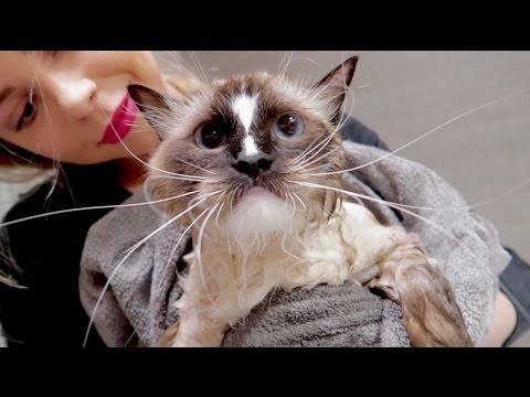 Czas na kąpiel!