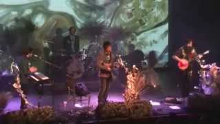 Proposal - Kishi Bashi NYE Concert (+Q&A)