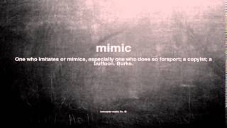 What does mimic mean